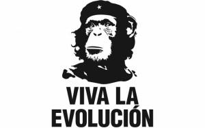 Sourced from www.believeinevolution.com