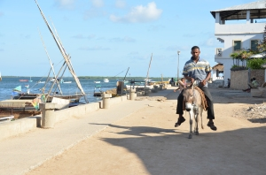 Lamu's main street. Its a seafront affair...